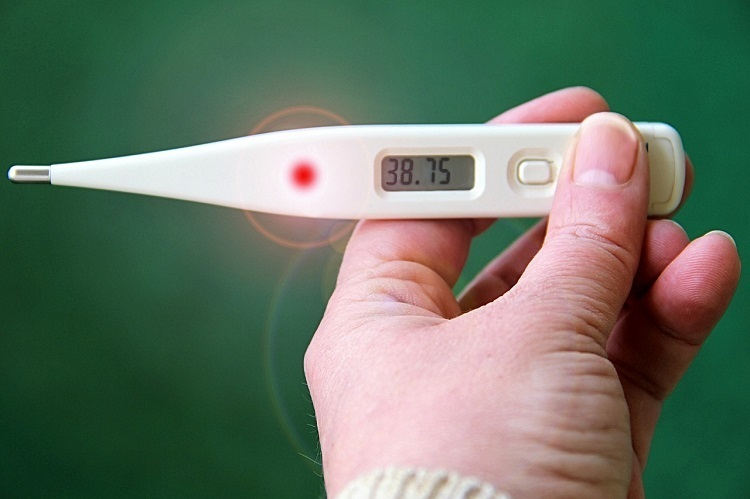 Digital thermometer displaying temperature