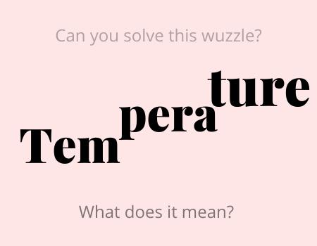 Temperature Wuzzle Puzzle